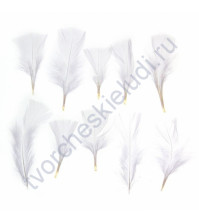 Перья декоративные, 4х10 см, 10 шт в пакете, цвет белый