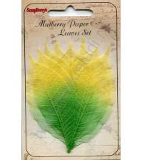 Набор скелетированных листьев 3х8 см, 8 штук, цвет желто-зеленый