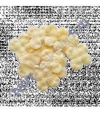 Мини-гортензия 2.5-3 см, 10 шт, цвет бледно-желтый