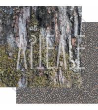 Бумага для скрапбукинга двусторонняя, коллекция ФОНОteka, 30х30 см плотность 190г/м, лист Север здесь!