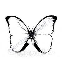 ФП печать (штамп) Бабочка-8, 4х3.3 см
