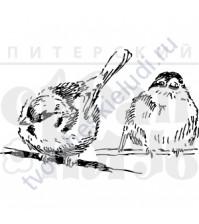 ФП печать (штамп) Набор Две пичужки, 6.6х4.1 см