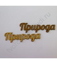Декоративная надпись Природа, 22х77 мм, цвет в ассортименте