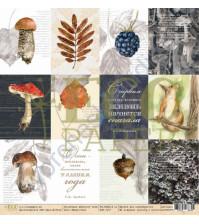 Бумага для скрапбукинга односторонняя коллекция Осенний лес, 30.5х30.5 см, 250 гр/м, лист Карточки