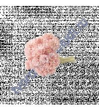 Гипсофилы 10 шт, цвет розово-персиковый светлый