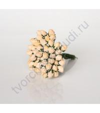 Бутоны роз средние закрытые 5 шт, цвет св.персиковый