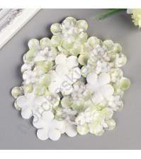 Набор бумажных лепестков Пятилистник с принтом 35 мм, 30 шт, цвет салатовыt wdtns
