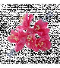Цветы Лилии ярко-розовые, размер цветка 3.75 см, 5 шт