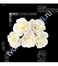 Магнолия 4 см, 5 шт, цвет белый