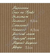 Чипборд Набор надписей-16 Достопримечательности Питера, 10 названий