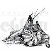 ФП печать (штамп) Королевские креветки, 5х4 см