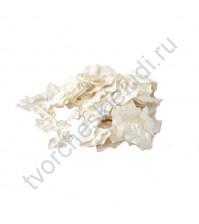 Листья остролиста без стебельков, цвет белый, 4х2.5 см, 10 шт