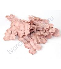 Лепестки гортензии большие 5 см, 10 шт, цвет какао