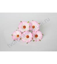 Ромашки розовый с белым, 4 см, 5 шт