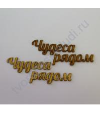 Декоративная надпись Чудеса рядом, 2 элемента, цвет в ассортименте