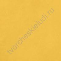 Кардсток гладкий Одуванчик (Dandelion), 30.5х30.5 см, 216 гр/м2