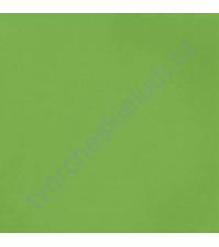 Кардсток гладкий Трава (Grass), 30.5х30.5 см, 216 гр/м2