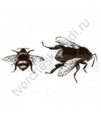 Набор штампов Пчела и шмель, 2 элемента