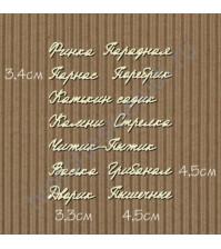 Чипборд Набор надписей-16 Питерский сленг, 13 элементов
