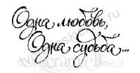 ФП печать (штамп) Надпись-5, Одна любовь, одна судьба, 5х2.6 см