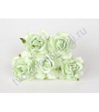 Кудрявые розы 4 см, 5 шт, цвет мятный
