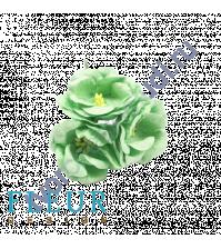 Цветы Магнолии мятные, размер цветка 4 см, 3 шт