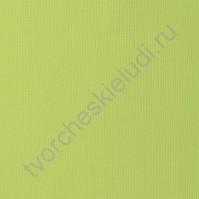Кардсток текстурированный Стручок гороха (Peapod), 30.5х30.5 см, 216 гр/м2