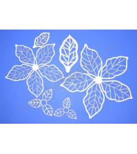 Чипборд Набор Листья, 6 элементов