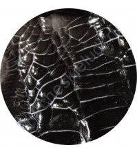 Кракелюрный гель ScrapEgo, 60 мл, цвет черный