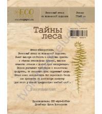 Резиновый штамп на вспененной подложке Папоротник, коллекция Тайны леса, 17х49 мм
