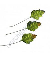 Листья шиповника зеленые с коричневым кончиком 3,5х2,5 см, 10 шт