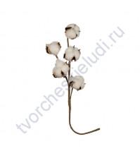 Декоративный элемент Хлопок, длина веточки 40 см, 5 соцветий