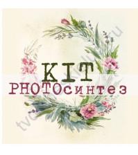 АРТЕЛЬЕ KIT - PHOTOсинтез