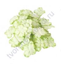 Лепестки гортензии большие 5 см, 10 шт, цвет зеленый двухтоновый