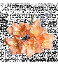 Набор лилий, 5 шт, цвет оранжевый
