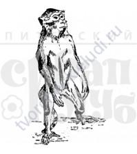 ФП печать (штамп) Обезьянка стоящая, 3.6х6.7 см